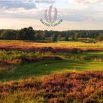 Walton Health Golf Coure